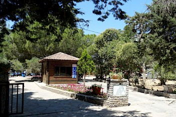 Tavşan Burnu Forest Campground